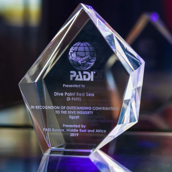 PADI Award received!